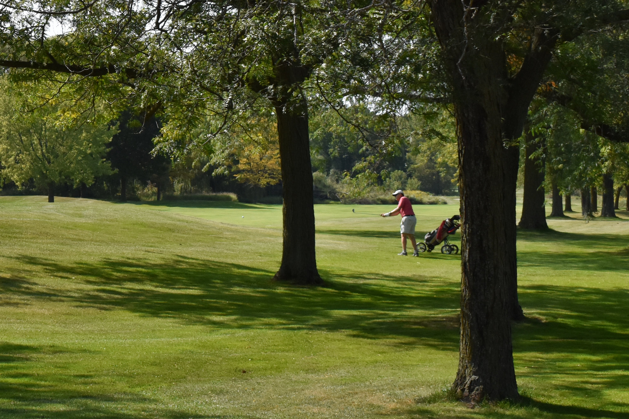 Neighborhoods near Madison area golf courses