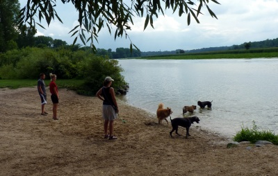 dog parks in dane county wi