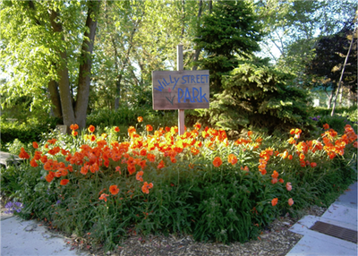 Willy Street Park in the Marquette Neighborhood